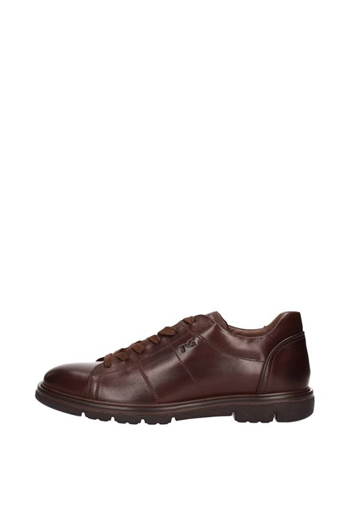 Nero Giardini low BROWN