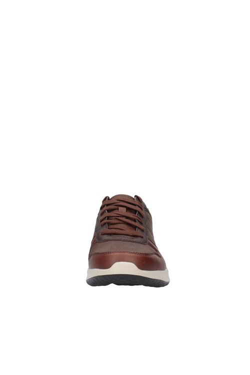 Skechers low BROWN